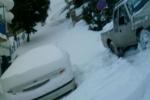 snow2_ (10)