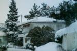 snow2_ (11)